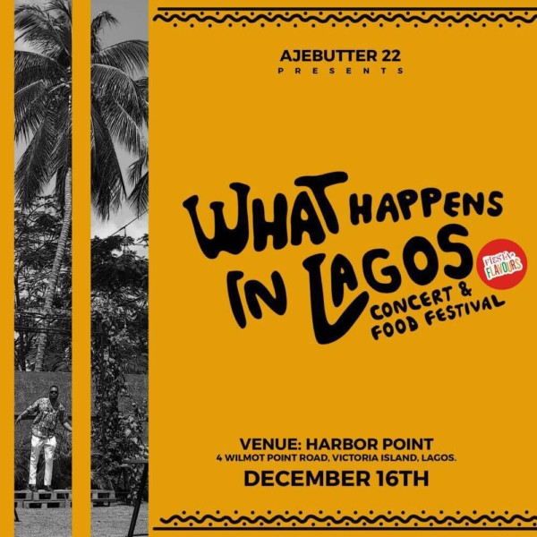 what-happens-in-lagos-concert-ajebutter-600x600