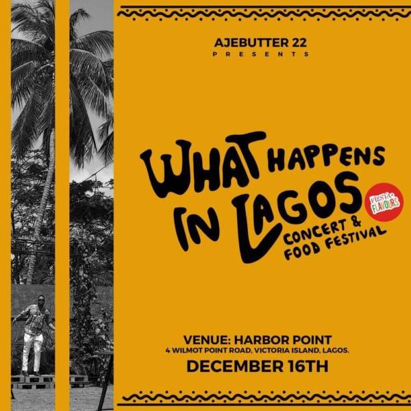 what-happens-in-lagos-concert-ajebutter-600x600